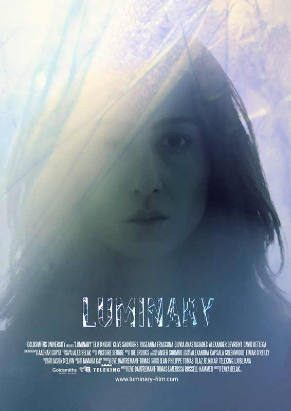 Luminary Poster